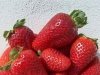 fragole_strawberry_0