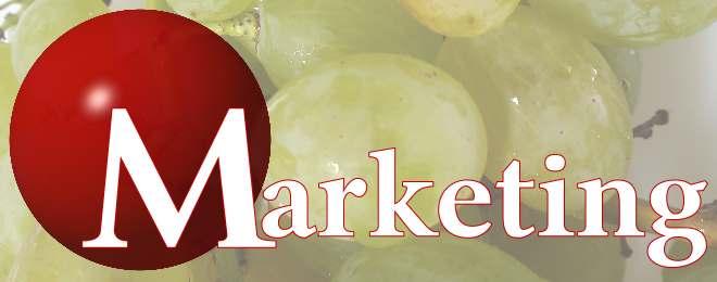 2.marketing_italsolution
