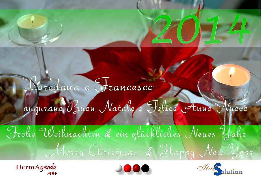 italsolution_christmas_card_2013
