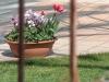 fiori_vaso
